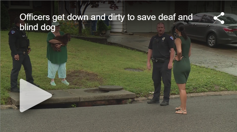 Police Rescue Blind, Deaf Dog From Sewer