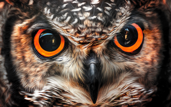 What Makes Owls' Eyes So Powerful?